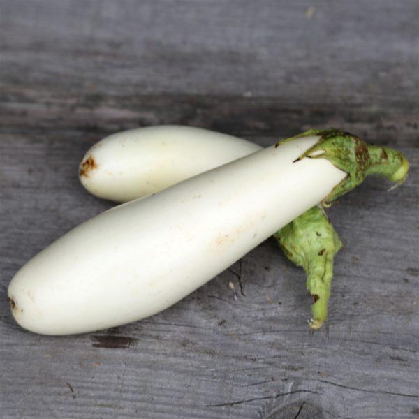 aubergine blanche