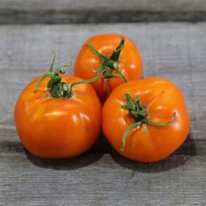 tomate-valencia-