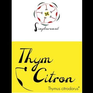 thym citron 2019